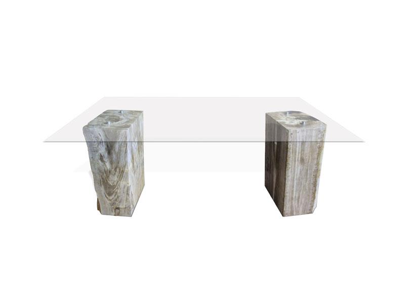 Glass with Petrified Wood Blocks